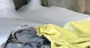 bezdomy