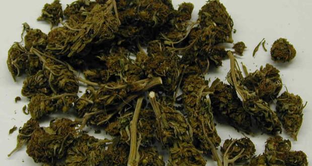 marihuans