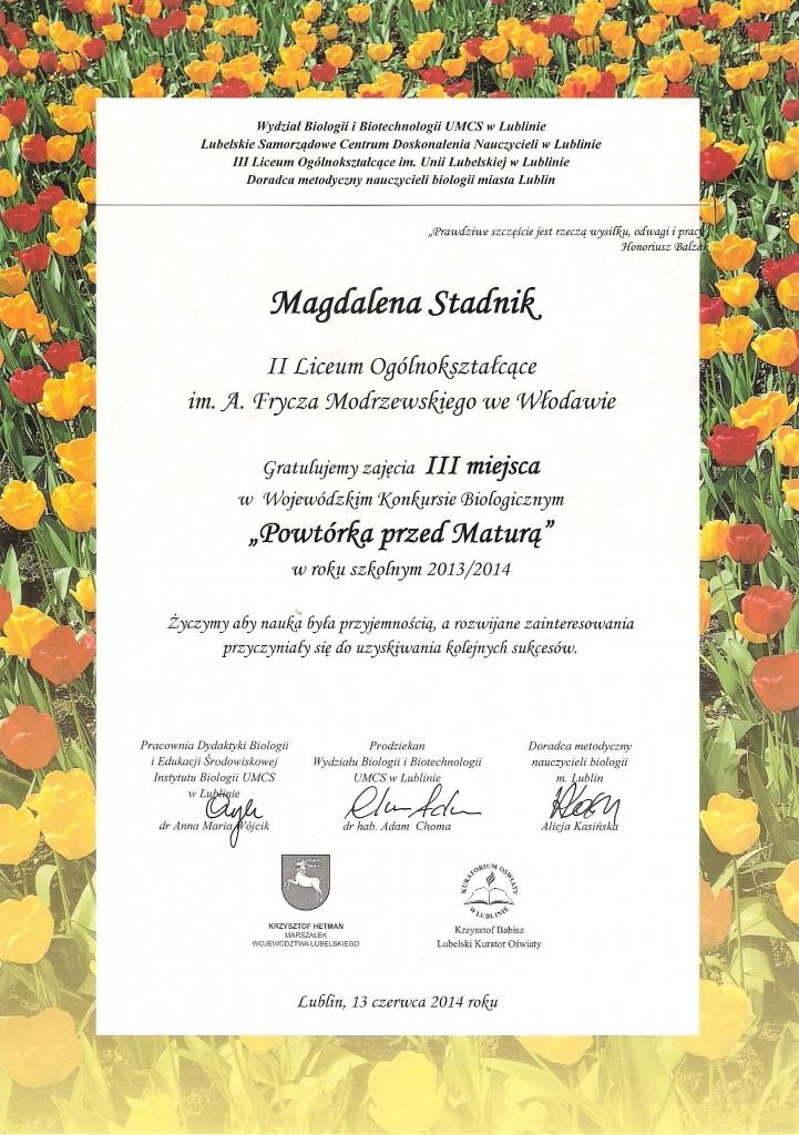 dyplom  Magdy